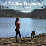 A Purified Pregnancy | Weeks 15-16