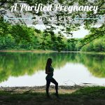 A Purified Pregnancy | Weeks 19-20