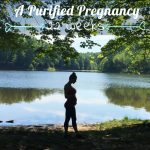 A Purified Pregnancy | Weeks 21-22