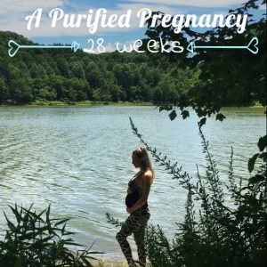 A Purified Pregnancy | Weeks 26-28